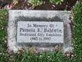 Image for Pamela E. Baldwin Memorial Tree - American Fork, Utah