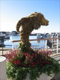 Image for Dolphin topiary - Oakland, CA