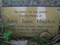 Image for Amy Jane Hughes, Pontfadog Churchyard, Wrexham, Wales, UK