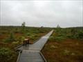 Image for Orono Bog - Orono, Maine