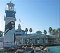 Image for Sea World Orlando