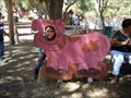 Image for Farm Animals - San Jose, CA