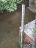 Image for River Mole, Leatherhead Surrey. UK