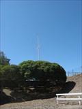 Image for South Bay Yacht Club nautical flag pole - Alviso, CA