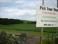 Image for Oxenholme Farm PYO, Kendal