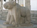 Image for Bears at Yellowstone Main Post Office - Mammoth, Wyoming
