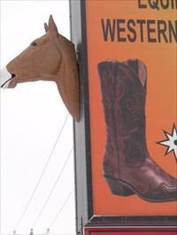 Photo d'une tête de cheval a l'avant.Photo of a horse's head forward.