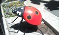Image for Ladybug Bop - Lagoon Amusement Park - Farmington, Utah