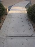 Image for Jake's Play Lot Animal Tracks - San Jose, CA