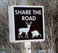 Image for Share the Road