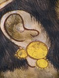 Image for Warrior Earing, Animal Kingdom