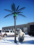 Image for Electric Palm Tree at Jack's Place