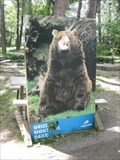 Image for Grizzly Sightings Daily - Calgary Zoo