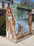 Image for Giraffe Faces - Hayward, CA