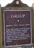 Image for Gallup