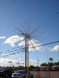 Image for Fireworks Tree - Grand Prairie Texas