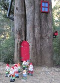 Image for Mt Buller Gnome Home