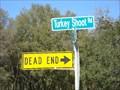 Image for Dead End at the Turkey Shoot - Seville, FL