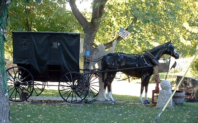 View of Roger and Jody Blum's horse and carriage lawn ornament from the northwest.  Photo taken Sept. 30, 2009.