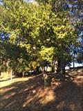 Image for Edrick J. Miller - Costa Mesa, CA