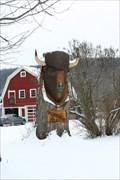 Image for Buffalo Jill - Hinsdale, NY