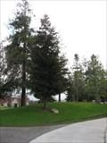 Image for Jerry Scott - Central Park - Santa Clara, CA