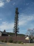 Image for SBA Christmas tree - Colfax CA