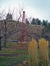 World's Tallest Tripod Orchard Ladder - Summerland, British
