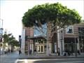 Image for REI - Santa Monica, CA