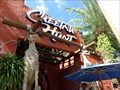 Image for Cheetah Hunt - Busch Gardens - Tampa, Florida.