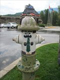 Image for Painted Hydrant - West Glacier, MT