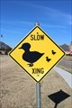 Image for Duck Crossing - Country Lakes - Argyle, TX