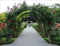 Image for Central Rose Garden; Christchurch, New Zealand