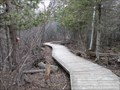 Image for Trail 26F Boardwalk in Stoney Swamp - Ottawa, Ontario, Canada