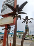 Image for Electric Palms - Oklahoma City, OK