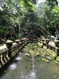 Image for Fountain in Paronella Park - Mena Creek - QLD - Australia