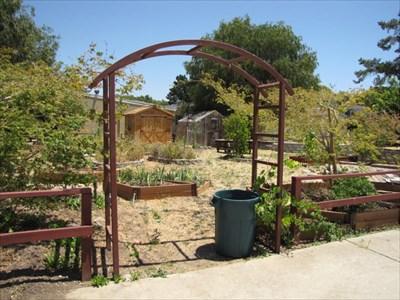 Garden Entrance, Almaden Country School, San Jose, California