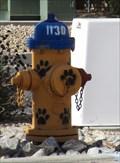 Image for Paw Print Hydrant - Alamogordo, NM
