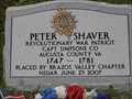 Image for Peter Shaver