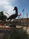 Image for Chaparrals - Aubrey High School - Aubrey, TX, US