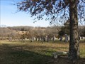 Image for Saint John Lutheran Church Cemetery - Drake, MO