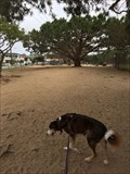 Image for El Segundo Dog Park - El Segundo, CA