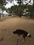 Image for El Segundo Dog Park - El Segundo, CA