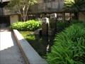 Image for Frat Fried Koi: In Memoriam - Santa Cruz, CA