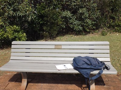 The wooden slat bench overlooking the ocean at Port Macquarie, on the North Coast of NSW. Dedication plaque for: Gregory & Marie Brown 1207, Sunday, 11 September, 2016