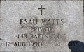 Image for 105 - Private Esau Watts - Armstrong, British Columbia