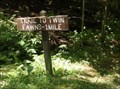 Image for Trail to Twin Fawns - Gilbert Lake State Park, Laurens, NY