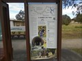 Image for Goulburn River High Country Rail Trail, Mansfield, Victoria