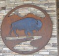 Image for Crazy Woman Square Bison ~ Buffalo, Wyoming