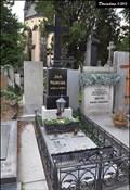 Image for 1875 Neruda & Jan Neruda - Vysehrad Slavin Cemetery (Prague)